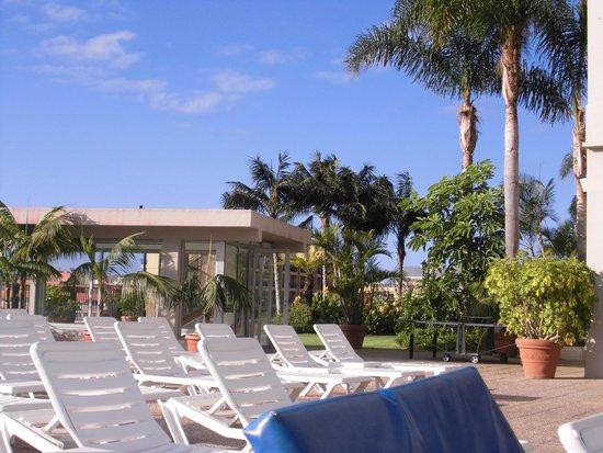 Hotel El Tope : garden