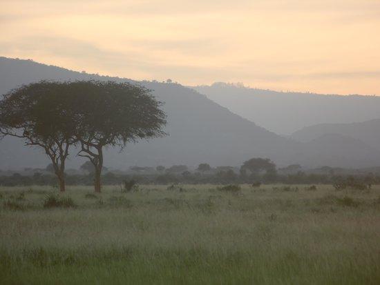 Tsavo East: breathtaking views