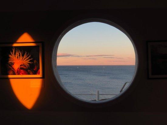 Ecocentro : Vista desde el entrepiso del mirador.