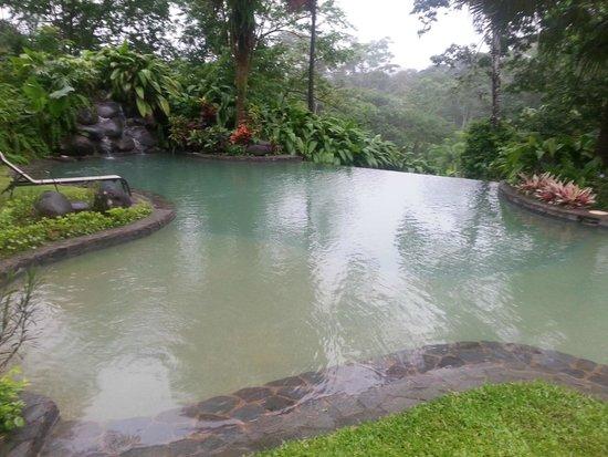 Sarapiquis Rainforest Lodge: Pool area
