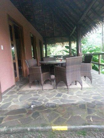 Sarapiquis Rainforest Lodge : Bar area