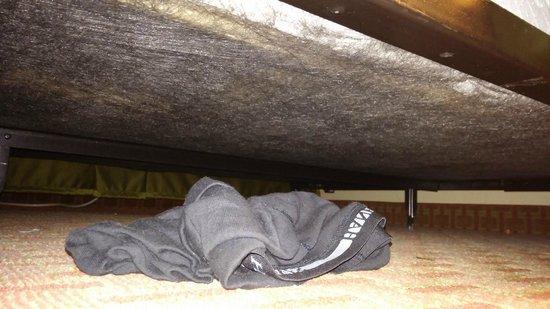 Quality Inn & Suites Santa Cruz Mountains : under bed #2