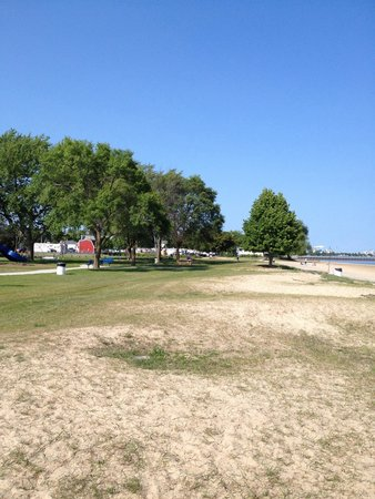 Starlite Beach: Lots of grass and trees