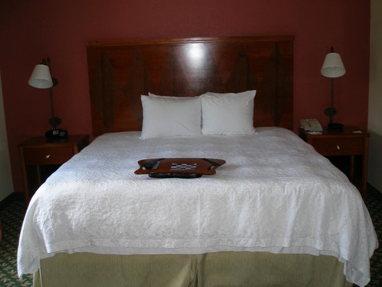 Hampton Inn & Suites By Hilton Williamsburg-Central : king bed