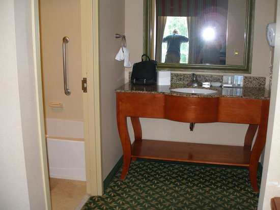 Hampton Inn & Suites By Hilton Williamsburg-Central : bathroom sink area