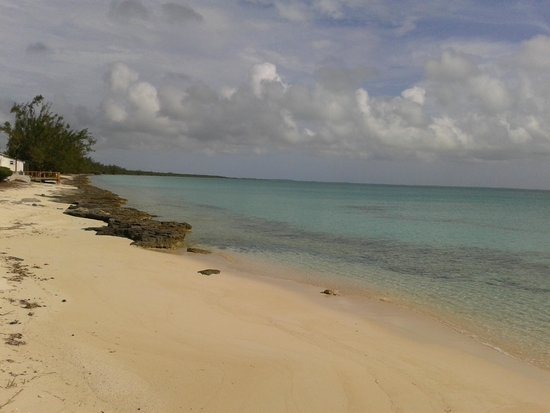 The Ocean Dream Beach Resort: BEAUTIFUL OCEAN