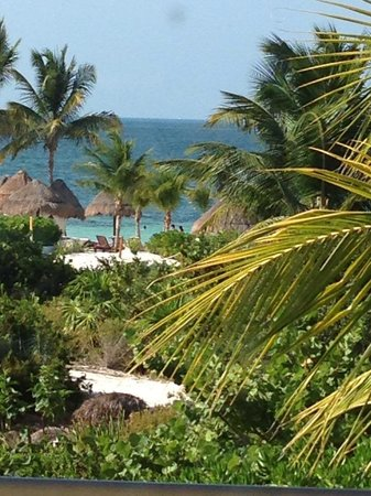 Beloved Playa Mujeres: View from my room