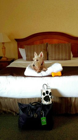 Red Lion Hotel Port Angeles: Where is room service with my dinner