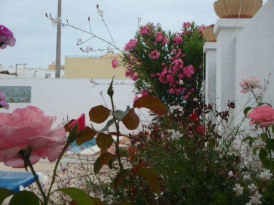 Sollagos Apartamentos Turisticos: Flower boxes on terrace in front of room