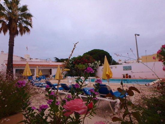 Sollagos Apartamentos Turisticos: Flower boxes overlooking pool area