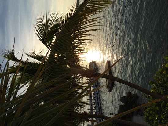 Hyatt Centric Key West Resort and Spa: Great sunset from the Resort