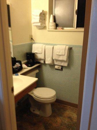 Sierra Motel : Bathroom.