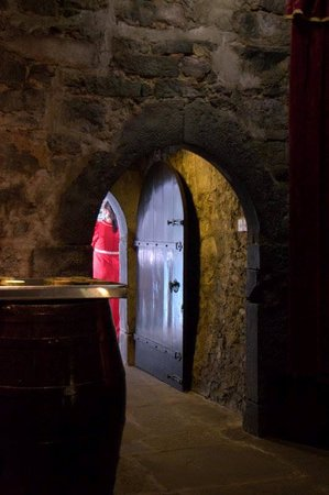 Dunguaire Castle's Medieval Banquet: Entrance hall where mead was served