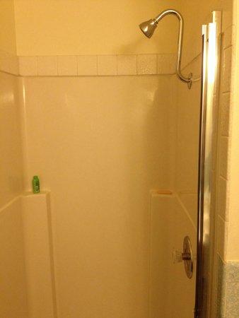 Sierra Motel : Shower stall.