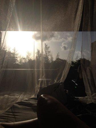 Hix Island House: Sunrise from bed Rectangular 5