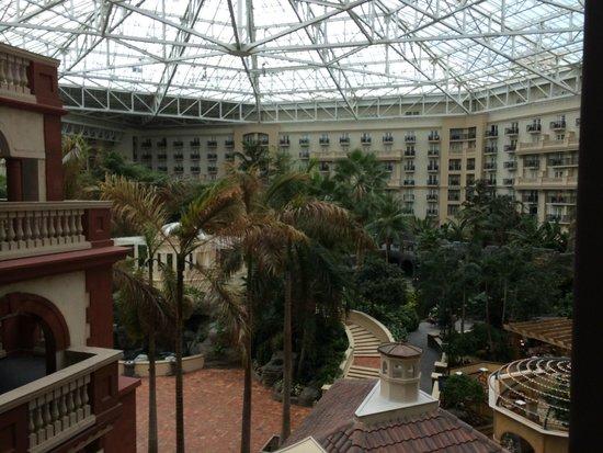 Gaylord Palms Resort & Convention Center: Atrium