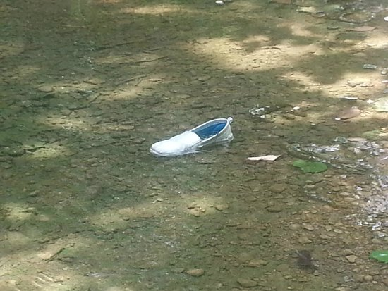 Chickasaw National Recreation Area : An eerily abandoned shoe left in a shallow bed under nonexistent falls