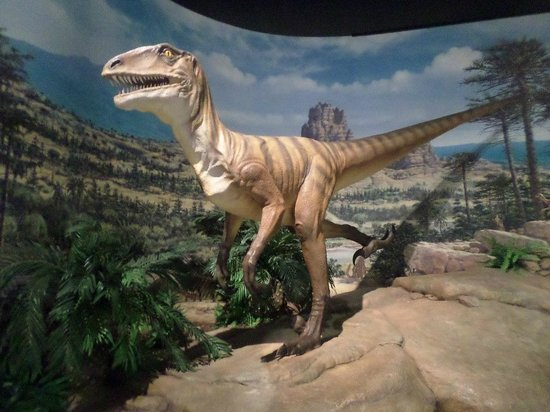 Kenosha Public Museum: Dinosaur age