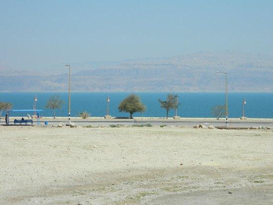 Mineral Beach : The beach area at the Dead Sea