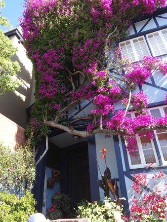 Lombard Street: As casas ao longo da rua