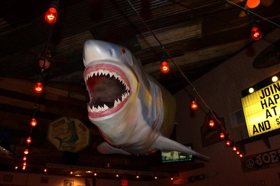 Joe's Crab Shack: Shark Week