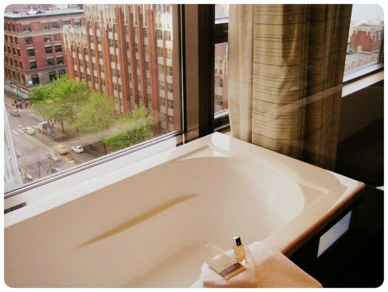 Loews Hotel 1000, Seattle: View from the tub!