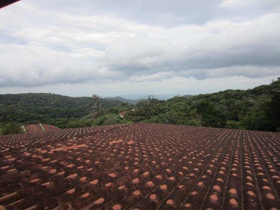 Hotel Montana Monteverde: Balcony view