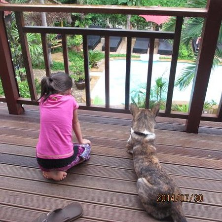 Guesthouse Liam's Suan Dok Mai : Emily and Lupa