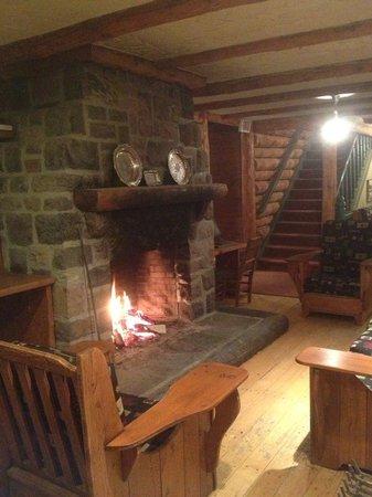 Manoir Alpine: Espace Foyer