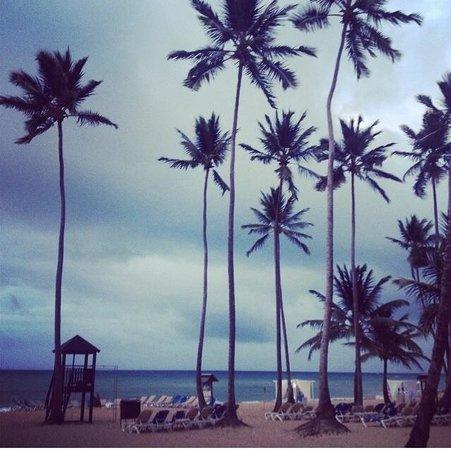 Dreams Punta Cana Resort & Spa : Peace