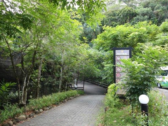 Permai Rainforest Resort: Permai