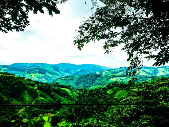 Monteverde Extremo Park : views