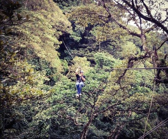 Monteverde Extremo Park : Zip lining