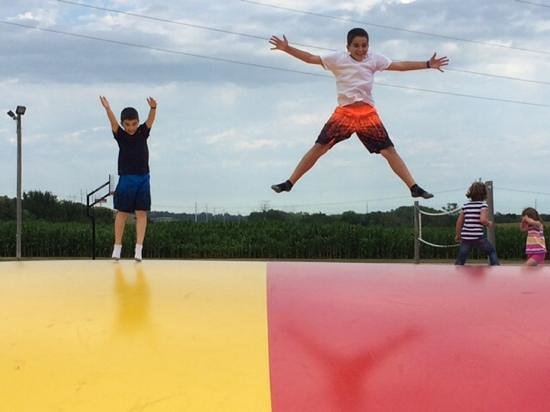 Yogi Bear's Jellystone Park Camp-Resort of Sioux Falls: The kids loved bouncing!!