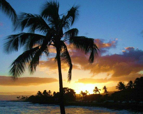 Beach House Restaurant... you gotta go... paradise awaits...