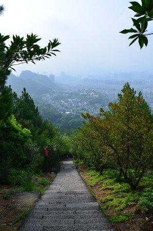 Lishui Liandu Baiyun Mountain: view from top
