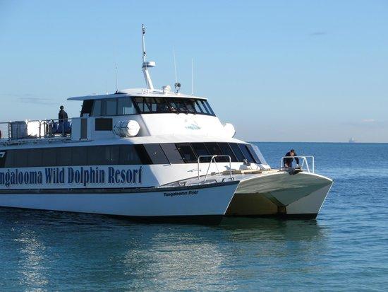 Tangalooma Island Ferry