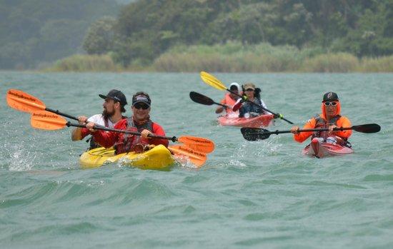 Adventures Panama: Remando en el Canal de Panama