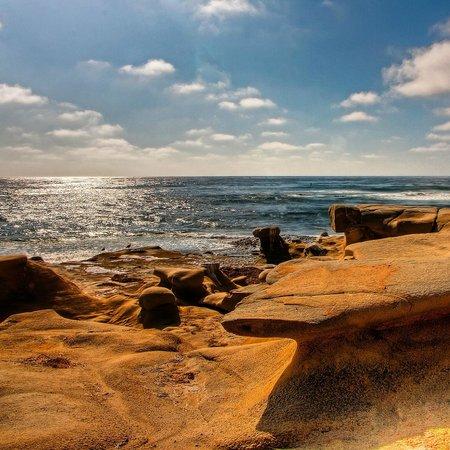 Windansea Beach : View