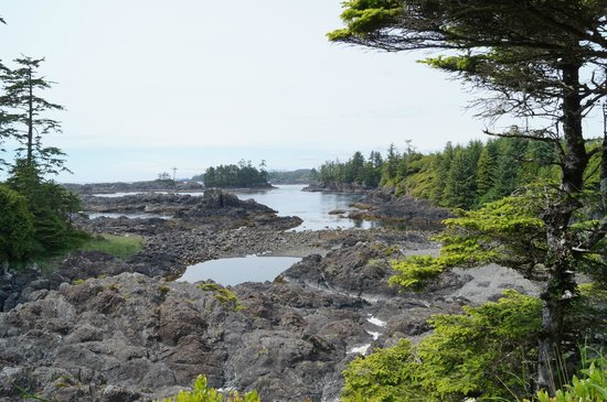 Wild Pacific Trail: Wild West Trail.Ucluelet BC