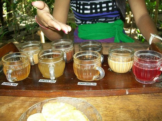 Negari Coffee: Free tasting of different coffees
