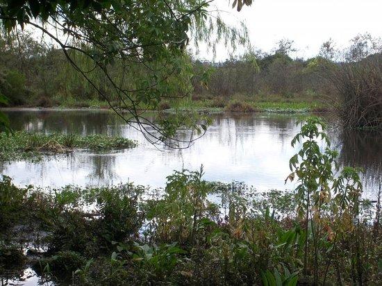 Humedal DeLa Conejera