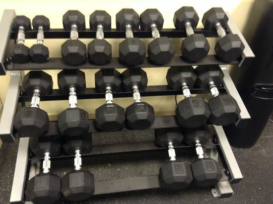 Holiday Inn Express Hotel & Suites Chicago-Deerfield/Lincolnshire: dumbbells