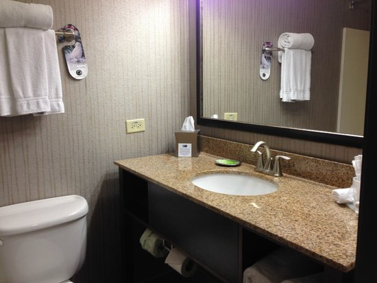 Holiday Inn Express Hotel & Suites Chicago-Deerfield/Lincolnshire : bathroom counter