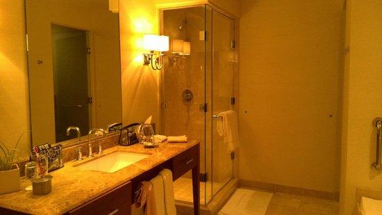 Bristol Panama: bathroom