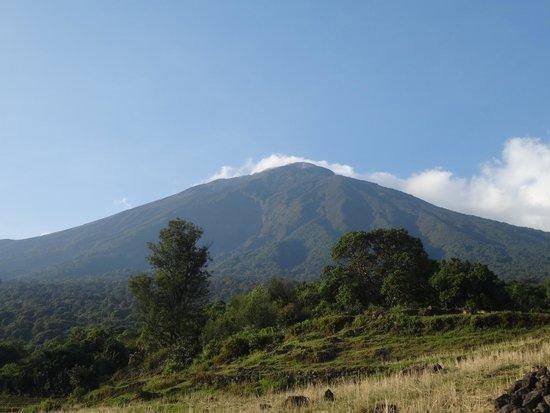Mgahinga Gorilla National Park: View of Mhabula volcanic mountain