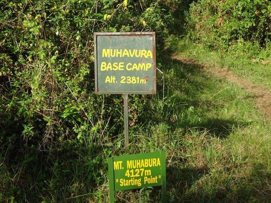 Mgahinga Gorilla National Park: Mhabula base camp