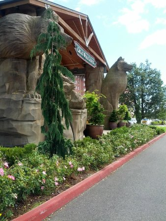Great Wolf Lodge: the front of the lodge