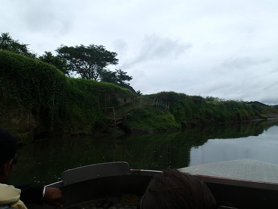 Sigatoka River Safari: The stairs to get from the jet boat to the village