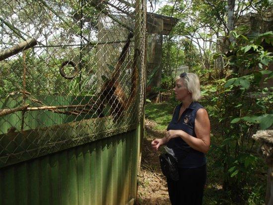Kids Saving the Rain Forest: KSTR WONDERFUL TOUR GUIDE